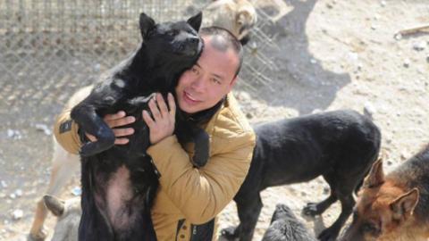 Warum sich dieser Millionär ruiniert, um Hunde zu retten.
