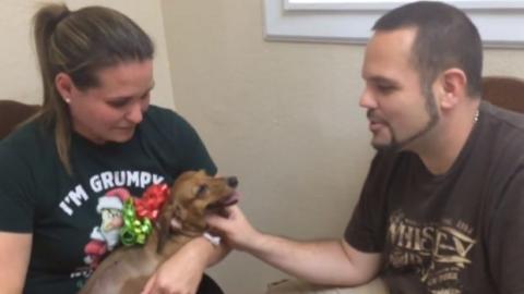 Sie sollten ihren kranken Hund weggeben. Aber ein Tierarzt hat etwas Wundervolles gemacht, um ihnen zu helfen.