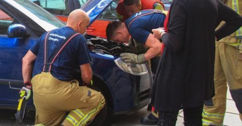 Unglaubliche Rettungsaktion! Was diese Männer in der Autofeder finden, lässt niemand kalt!