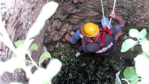 Die spektakuläre Rettung einer Hündin aus einem Brunnen in Indien