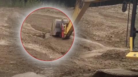 Dieses unter Schlamm begrabene Rehkitz wird auf spektakuläre Weise gerettet