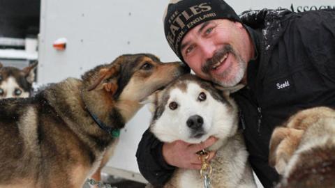 Schlittenhunde: Mehr als nur einfache Gefährten!