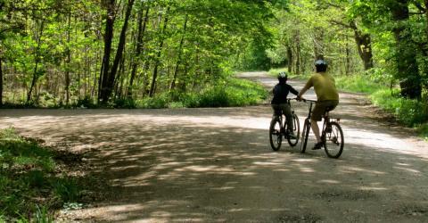 Als die Radfahrer das im Wald entdecken, trauen sie ihren Augen nicht