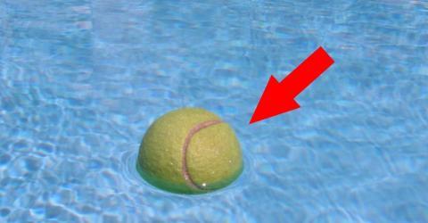 Deshalb ist es genial, einen Tennisball ins Schwimmbad zu werfen. Du kommst nicht darauf!