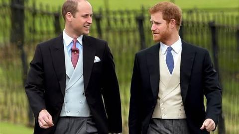 Star Wars: Die Prinzen Harry und William sollen im neuen Star-Wars-Film zu sehen sein!