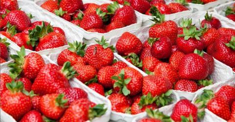 Aldi: Kundin macht grausige Entdeckung in Erdbeerschale