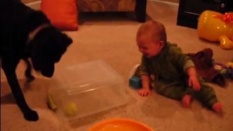 Es gibt eine echte Verbindung zwischen diesem Baby und diesem Hund. Und dies gilt auch, wenn sie Dummheiten machen.