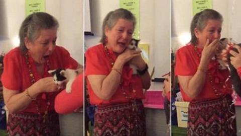 Eine Lehrerin aus Texas, traurig über den Verlust ihrer Katze, weint aus Freude als ihre Schüler ihr zwei Kätzchen schenken
