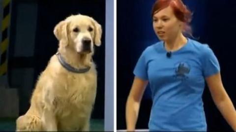 Dieser Hund möchte seinem Frauchen wirklich gefallen. Doch das ist gar nicht so einfach!