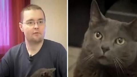 Als ihr Herrchen in Ohnmacht fällt, tut diese Katze etwas Unerwartetes. Sie ist bemerkenswert!