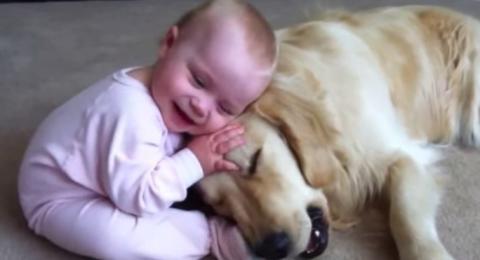 Dieses Baby spielt mit einem sehr geduldigen Hund. Sie werden dahinschmelzen!