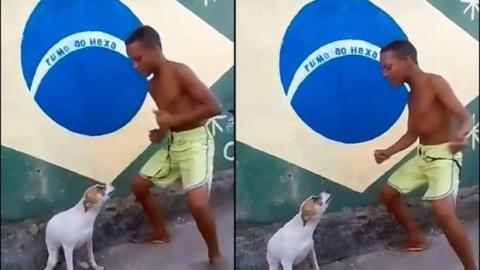 Wenn dieser Junge Samba tanzt, macht sein Hund gleich mit!
