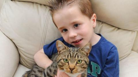 Dieser kleine Junge wurde auf der Straße angegriffen. Doch seine Katze hat ihm auf unfassbare Weise das Leben gerettet.