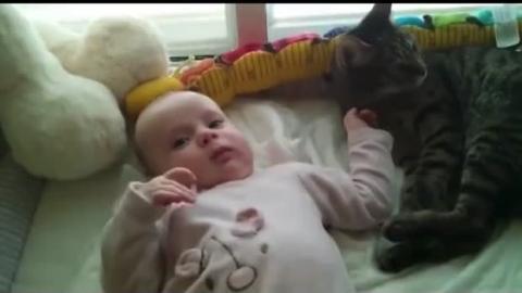 Diese Katze liebt diesen Säugling, aber weiß nicht sorecht, wie sie ihre Zuneigung zeigen soll.