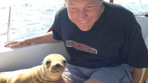 Ein Seelöwe zu Gast auf einem Boot und seine einmalige Reaktion.