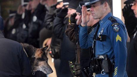 Polizisten begleiten ihren Hund bei seinem letzten Besuch beim Tierarzt.