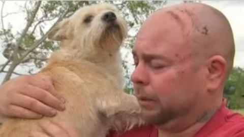 Eine Familie findet nach einem Tornado ihren Hund wieder.