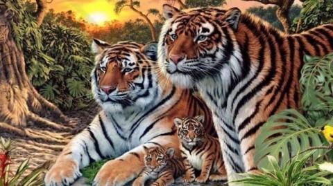 Rätsel: Auf dem Bild sind mehr als vier Tiger versteckt!