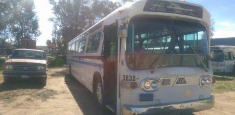 Sie kauft einen alten Bus auf Ebay: Was sie daraus macht, ist ein Traum