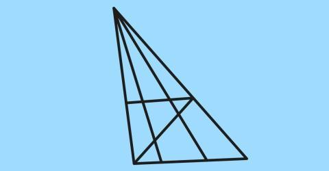 Nur jeder 10. findet alle Dreiecke im Bild