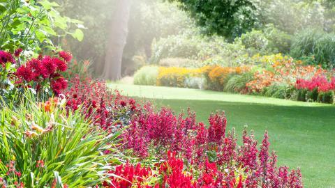 So könnt ihr euren Garten zu jeder Jahreszeit genießen