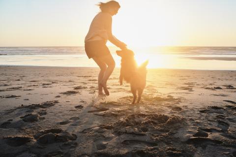 Darum leben Hundebesitzer gesünder
