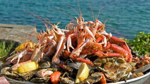 Meeresfrüchte-Studie: Diese sommerlichen Gerichte enthalten etwas, was deiner Gesundheit schadet