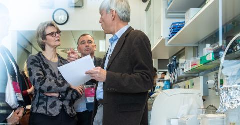 Wissenschaftler: Wir können bald Krebs heilen