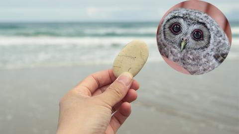 Sie verwandelt Steine in lebendige Kreaturen!