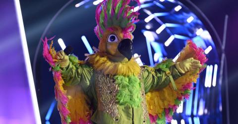 Ganz Deutschland rätselt: Welcher Promi steckt hinter dem Kakadu?