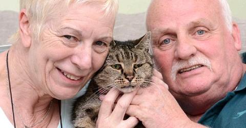 Die älteste Katze der Welt ist gestorben. Ihre Besitzer nehmen Abschied