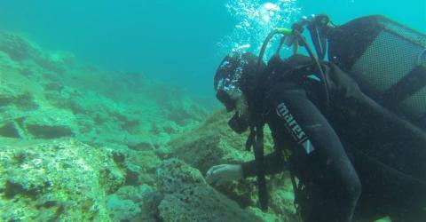 Taucher erkunden Meeresgrund und entdecken etwas Grausames