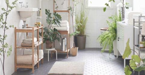 DIY: Verwandle dein Badezimmer in einen umweltfreundlichen Ort