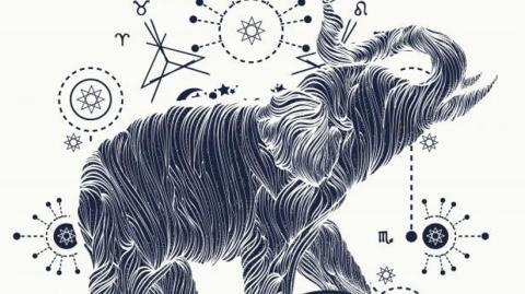 Afrikanische Astrologie verrät viel mehr über dich, als normale Sternzeichen!