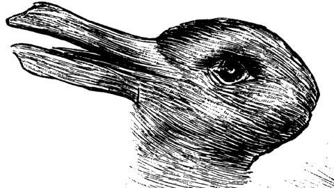 Hase oder Ente? Der Persönlichkeitstest