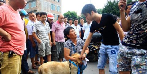 Chinesen feiern ein Festival mit Hunden, bei dem uns ganz schön übel werden muss