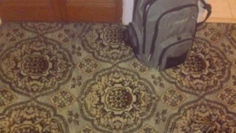 Dieses Bild macht derzeit die Internetbenutzer verrückt. Siehst du das Tier, das sich darauf versteckt?