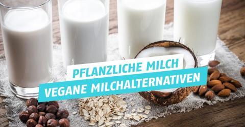 Pflanzliche Milch: Sorten, Eigenschaften, Geschmack der besten Milch-Alternativen