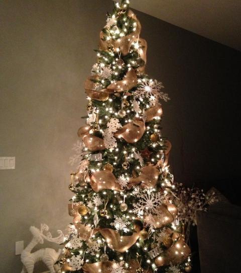 weihnachten 2016 den richtigen weihnachtsbaum ausw hlen. Black Bedroom Furniture Sets. Home Design Ideas