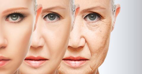 Telomer-Effekt: So altert euer Körper langsamer
