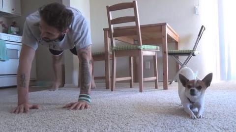 Dieser Mann macht Sport mit seinem Hund. Sie werden Ihren Augen nicht trauen.