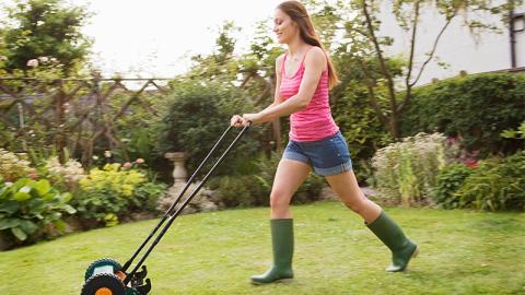 Gartenpflege: Diesen positiven Effekt hat gemähtes Gras auf die Umwelt