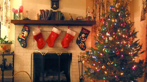Weihnachtsbaum frisch halten: So bleibt der Tannenbaum grün
