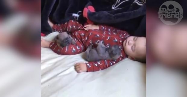 Baby und Welpen schlafend