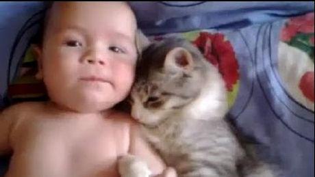 diese kleine katze liebt das baby und schmust gerne mit ihm. Black Bedroom Furniture Sets. Home Design Ideas
