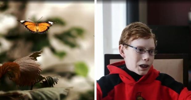 Schmetterlingskind