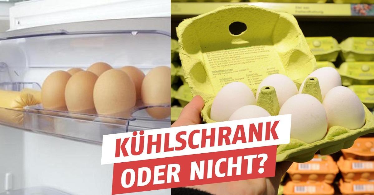 Kühlschrank Ei : Darf ich eier in den kühlschrank stellen