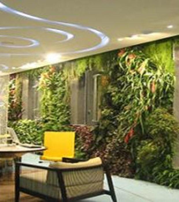 Bepflanzte Wand dekoration alles zum grünen und ökotrend