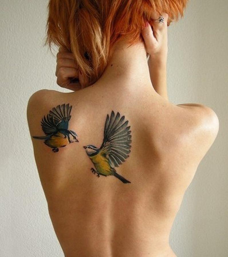 Vogel-Tattoo: Zwei farbige Meisen auf dem Rücken