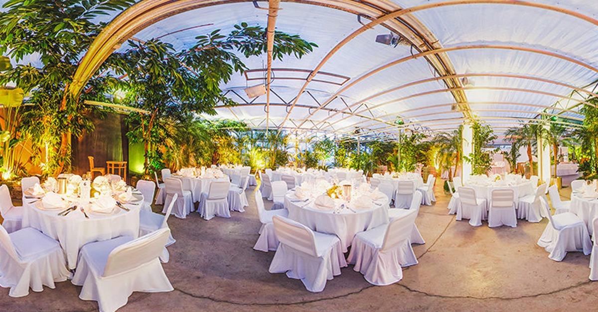 Die Besten Hochzeitslocations In Freiburg Und Umgebung
